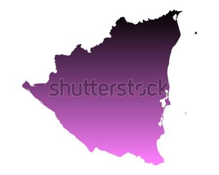 Mapa África do Sul roxo vetor isolado ilustração Foto stock © rbiedermann