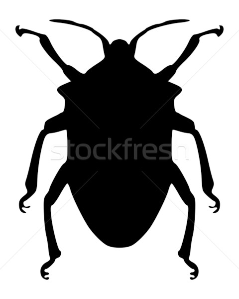 True bug silhouette Stock photo © rbiedermann