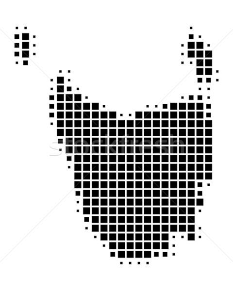Kaart tasmanië reizen zwarte eiland patroon Stockfoto © rbiedermann