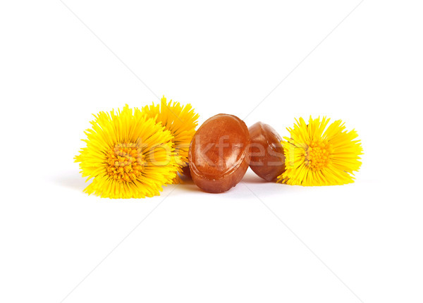 Cough drops with coltsfoot flowers Stock photo © rbiedermann