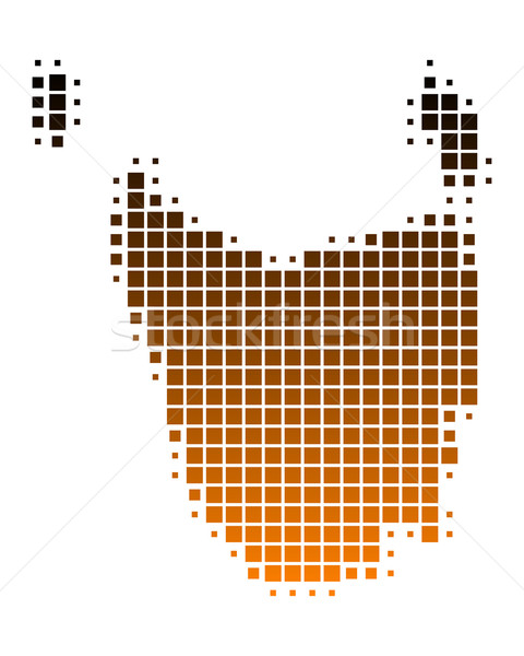 Harita tazmanya ada model kare örnek Stok fotoğraf © rbiedermann