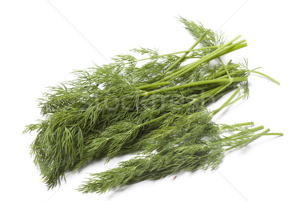dill Stock photo © rbouwman