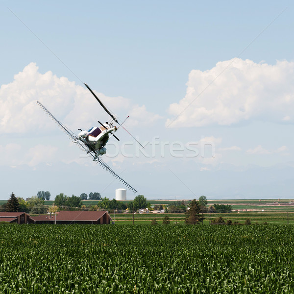 Helicopter Spraying Crops With Pesticide Stock photo © rcarner