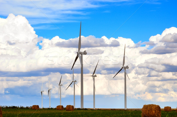Wind Generators and Hayfields Stock photo © rcarner