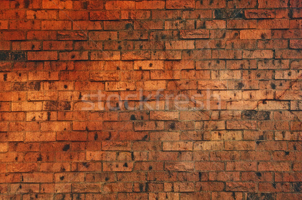 Brown Colored Brick Wall Stock photo © rcarner