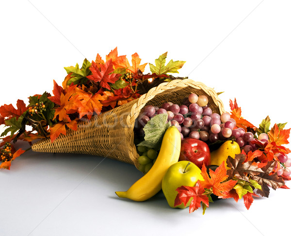Cornucopia the horn of plenty Stock photo © rcarner