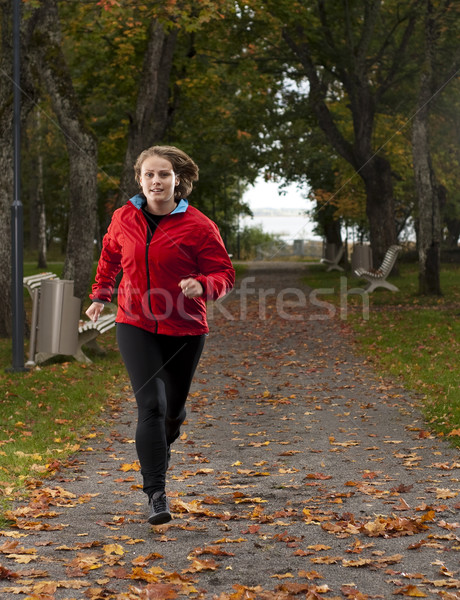 Athletic woman. Stock photo © Reaktori