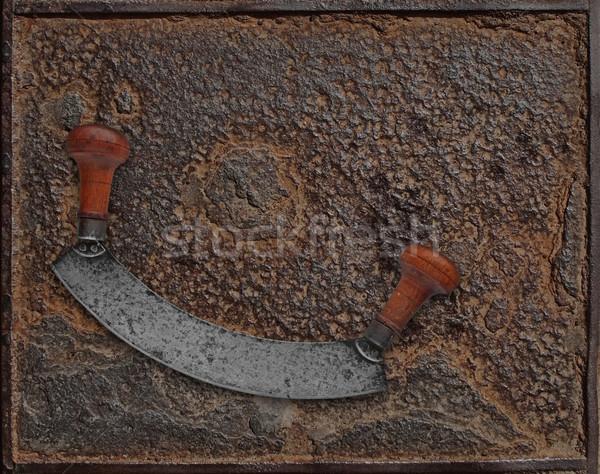 Bağbozumu paslı plaka fransız stil ot Stok fotoğraf © RedDaxLuma