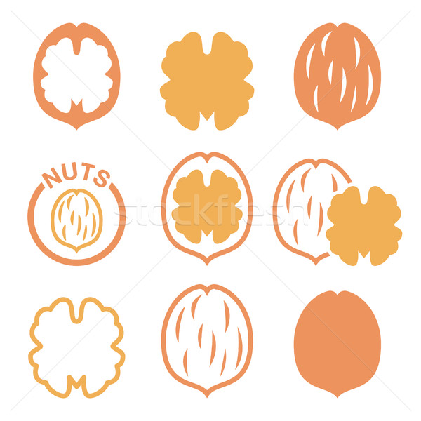 Walnut, nutshell vector icons set  Stock photo © RedKoala