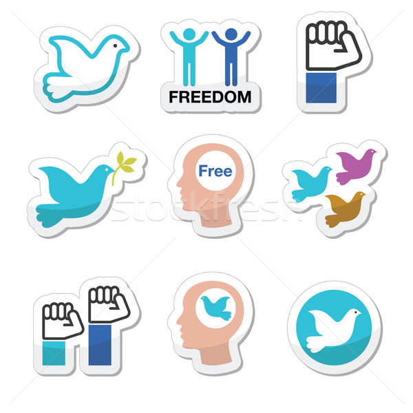 Freedom icons set - dove and fist symbols  Stock photo © RedKoala
