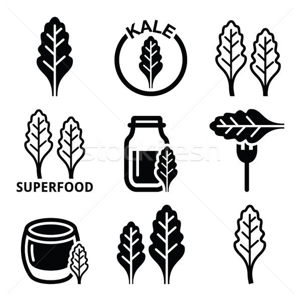 Superfood - kale leaves vector icons set    Stock photo © RedKoala