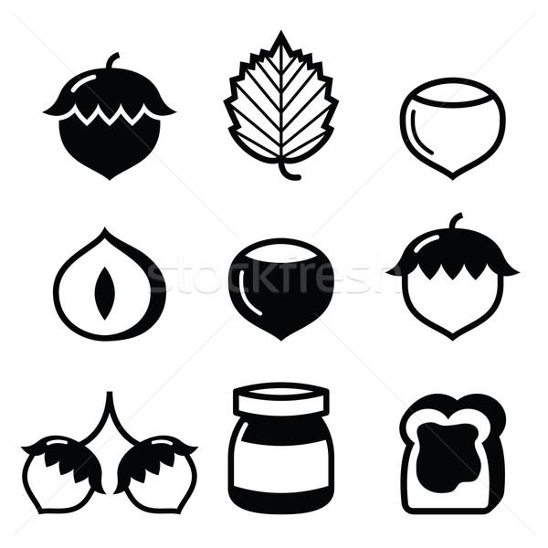 Hazelnuts, nuts - food vector icons set  Stock photo © RedKoala