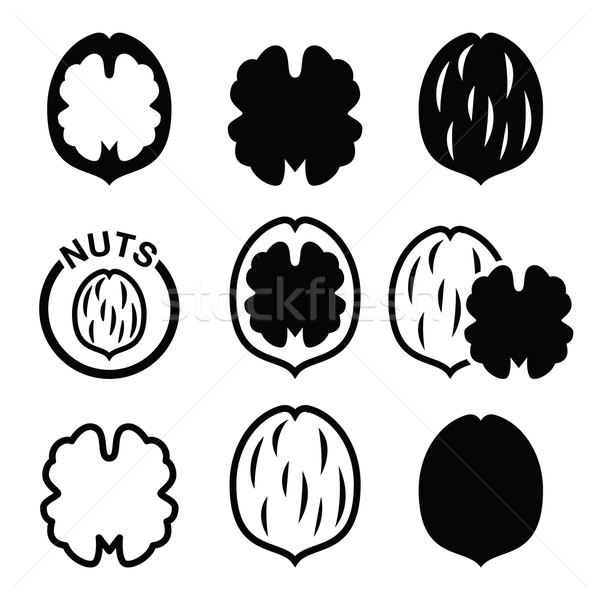 Stock photo: Walnut, nutshell vector icons set