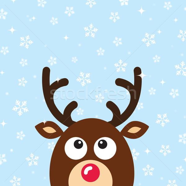 вектора северный олень снега рождество карт Сток-фото © RedKoala