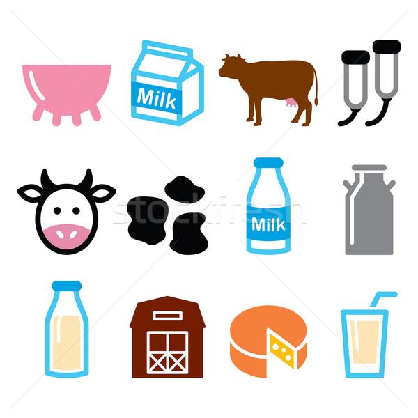Milk, cheese production, cow vector icons set  Stock photo © RedKoala