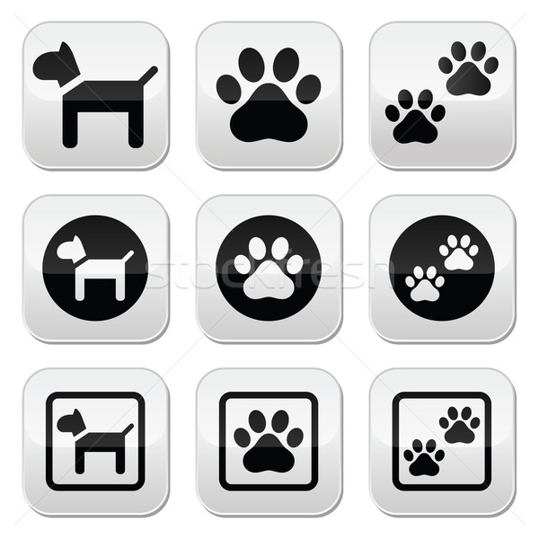 Dog, paw prints vector buttons set Stock photo © RedKoala