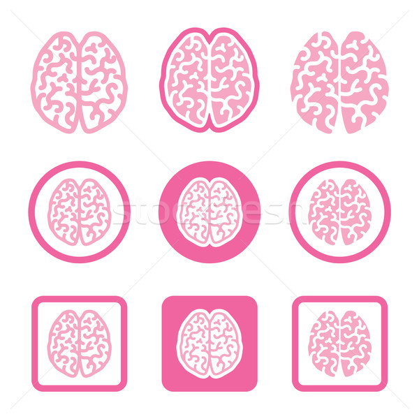 Human brain icons set - intelligence, creativity concept Stock photo © RedKoala
