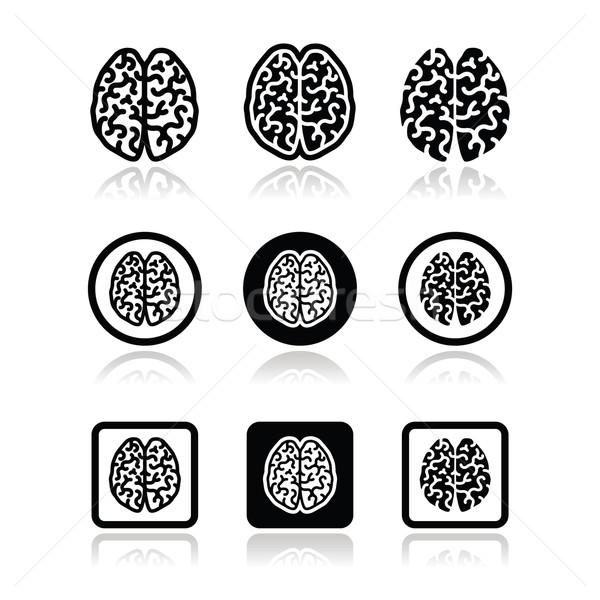 Stock photo: Human brain icons set - intelligence, creativity concept
