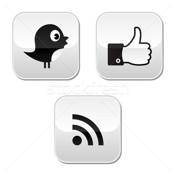 Social media iconen facebook tjilpen rss glanzend Stockfoto © RedKoala