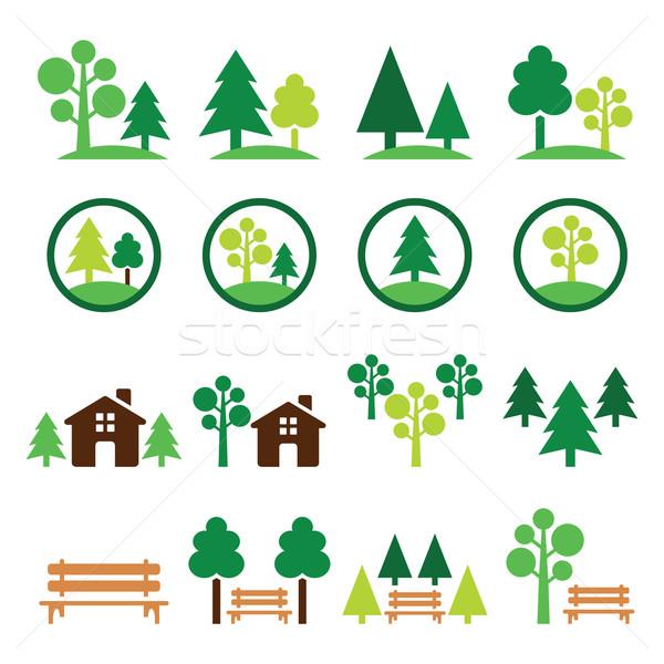 Trees, forest, park vector green icons set  Stock photo © RedKoala