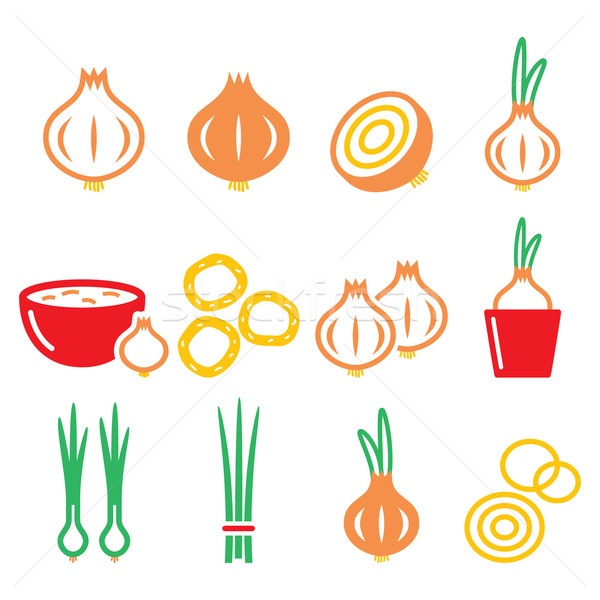 Onion, spring onions colorful icons set  Stock photo © RedKoala