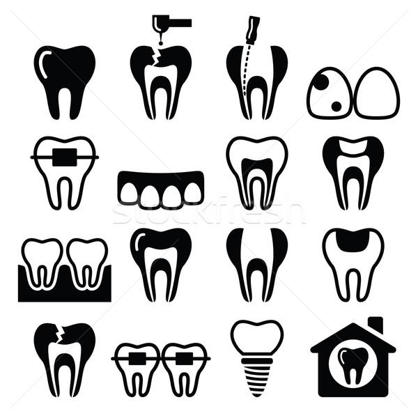 Dents dents dentaires clinique vecteur Photo stock © RedKoala