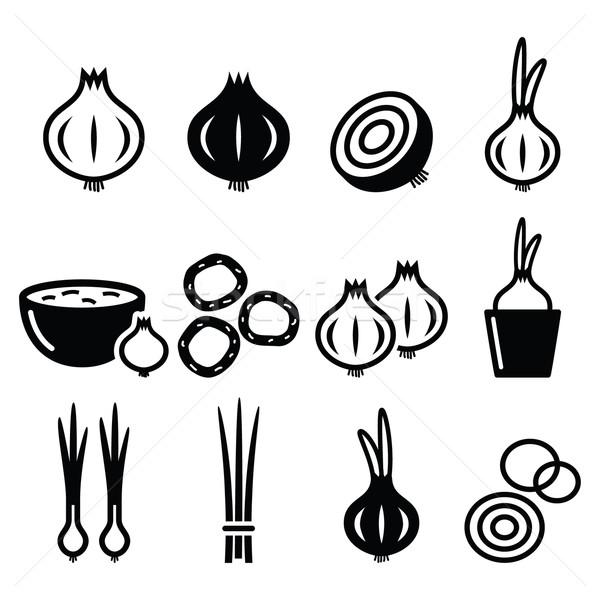 Onion, spring onions icons set  Stock photo © RedKoala