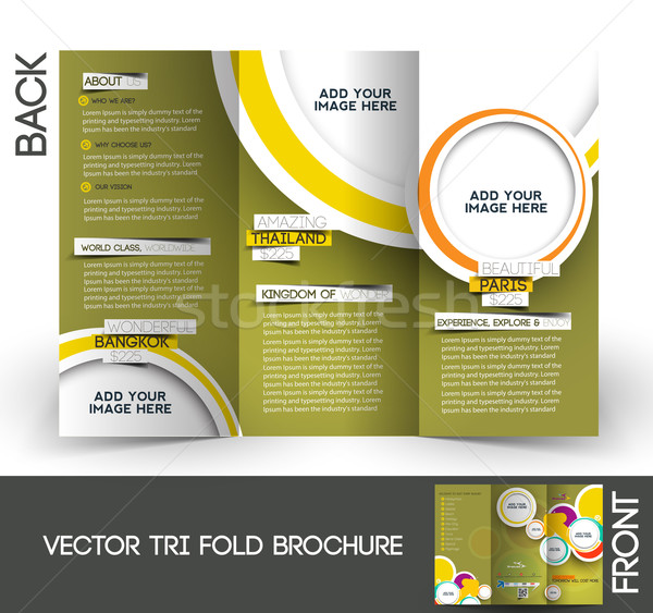 tri fold travel brochure vector illustration red shine studio