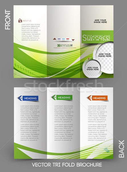 Corporate Business Tri-Fold Brochure Stock photo © redshinestudio