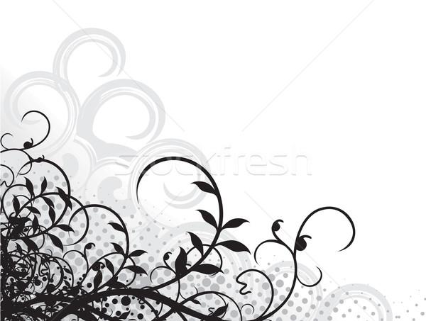 フローラル グランジ デザイン スペース 文字 ストックフォト © redshinestudio
