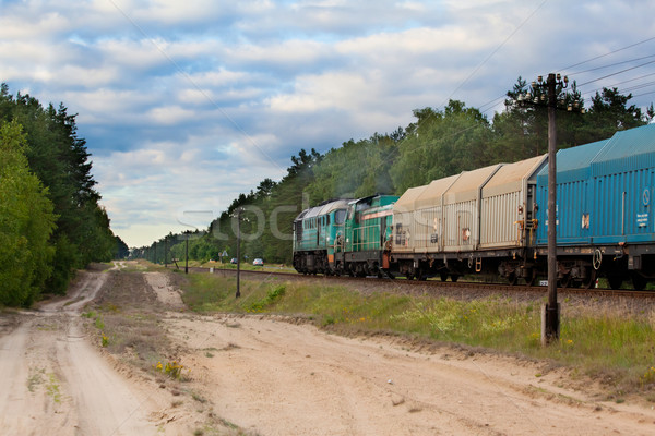Diesel train locomotive nature paysage boîte Photo stock © remik44992