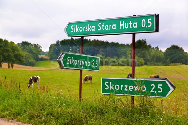 Pologne Voyage signe village itinéraire nature Photo stock © remik44992