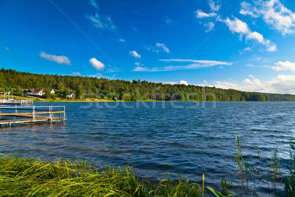 пейзаж озеро лет лес природы зеленый Сток-фото © remik44992
