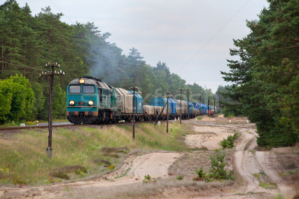 Diesel train locomotive nature paysage couleur Photo stock © remik44992