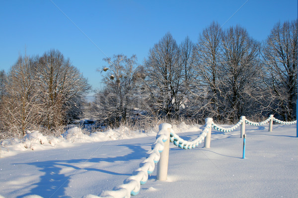 Winter scene Stock photo © remik44992