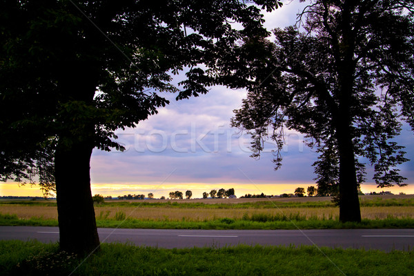 пейзаж деревья пару драматический небе облака Сток-фото © remik44992