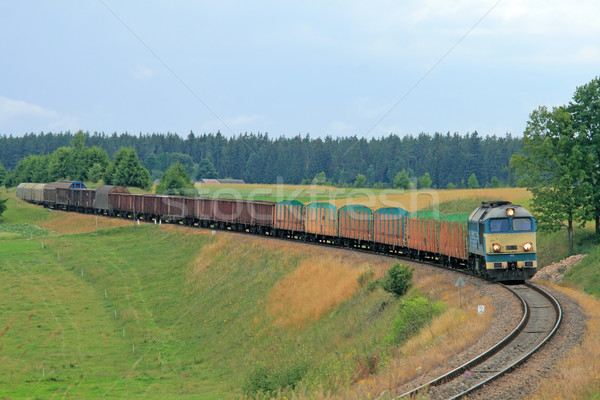 Diesel train locomotive paysage été pouvoir Photo stock © remik44992