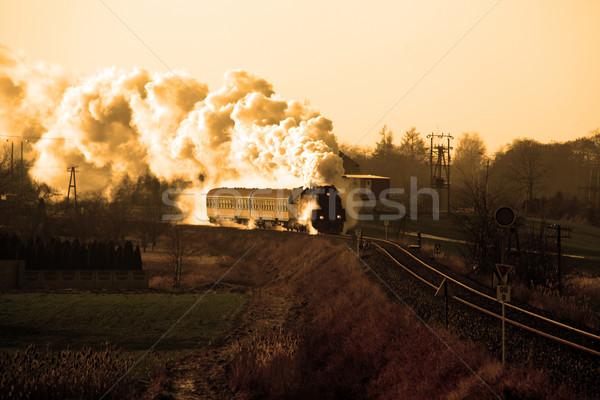 Oude retro stoom trein vintage platteland Stockfoto © remik44992
