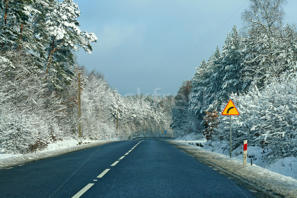 Road with curve ahead, winter time Stock photo © remik44992
