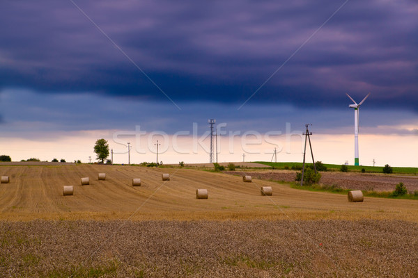Summer landscape with wind turbines Stock photo © remik44992