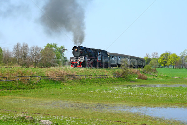 Rural landscape with steam train Stock photo © remik44992