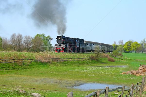 Rural landscape with steam train Stock photo © remik44992