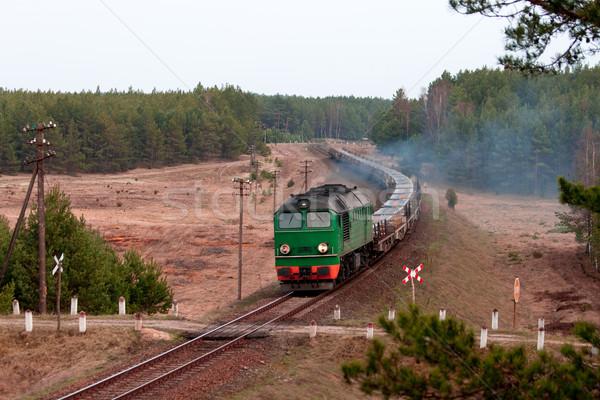 Dizel tren iki yol yaz sanayi Stok fotoğraf © remik44992
