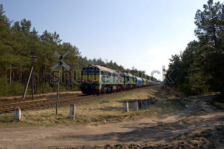 Diesel trein twee natuur zomer industrie Stockfoto © remik44992