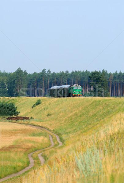 Trem floresta verão verde cor vintage Foto stock © remik44992