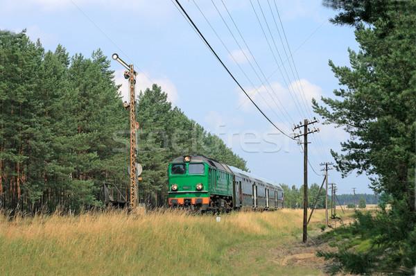 поезд лес лет зеленый Vintage двигатель Сток-фото © remik44992