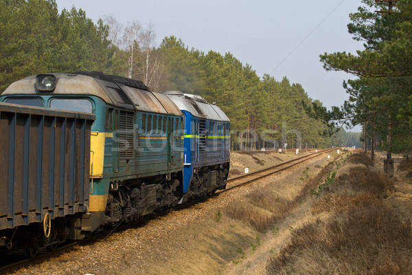Diesel tren dos naturaleza verano acero Foto stock © remik44992