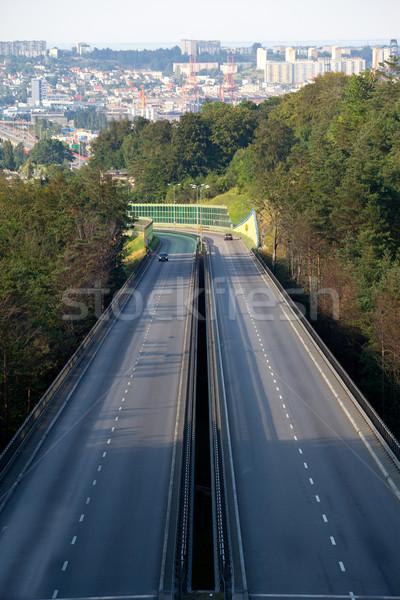 автострада час пик движения дороги путешествия Сток-фото © remik44992