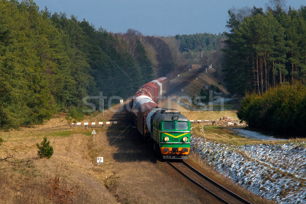 Diesel train herbe forêt hiver froid Photo stock © remik44992