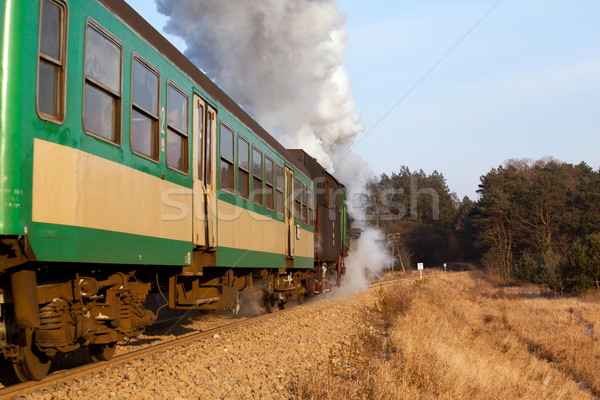 старые ретро пар поезд Vintage станция Сток-фото © remik44992